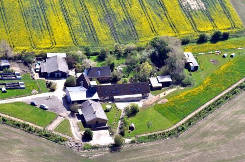 Fuglsang Farm Holiday