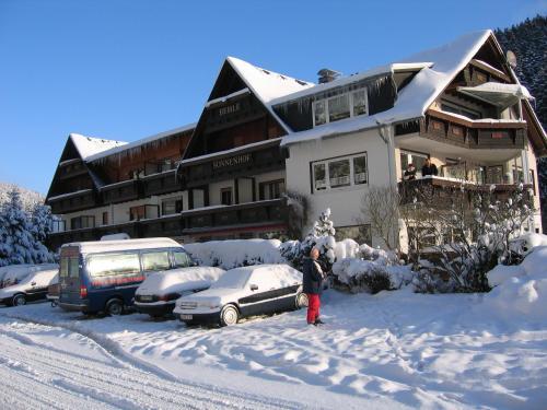 Sonnenhof-Willingen during the winter