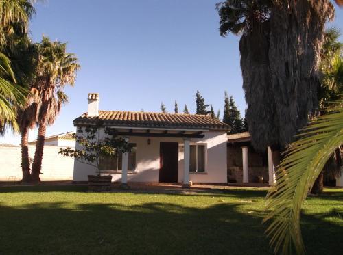 El Olivar de Roche Viejo