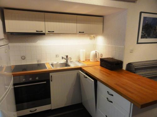A kitchen or kitchenette at Apartment Zoki Driovier