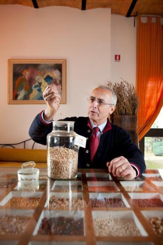 Bio Agriturismo Fattoria Dei Comignoli