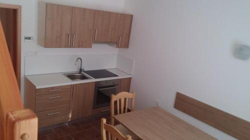 Kuhinja oz. manjša kuhinja v nastanitvi Apartment Macesen