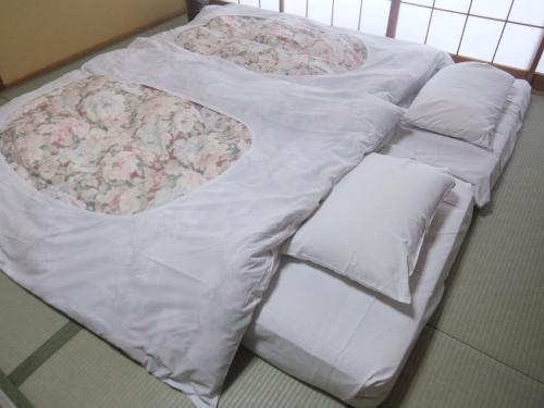 photo of 日興日光酒店(Nikko Tokanso) | 日本栃木縣(Tochigi, Japan)