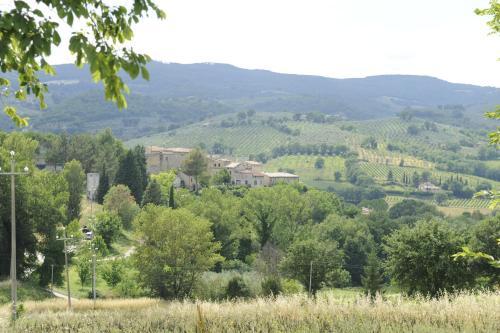 Agriturismo Montecricco