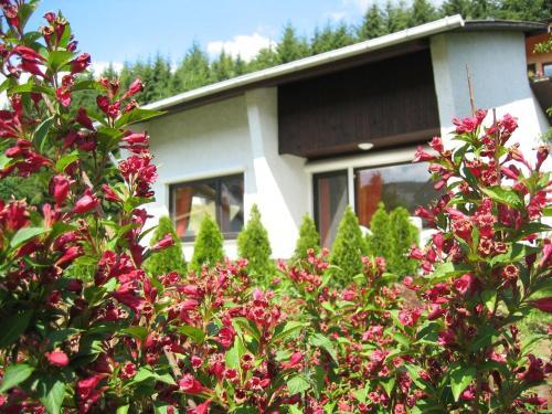 Ferienhaus-Lind