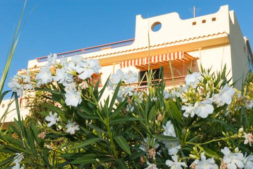 Surra Mediterranean Apartments