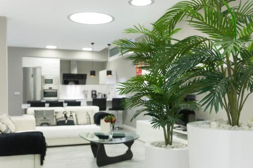 Apartamento Lagun Concha Beach