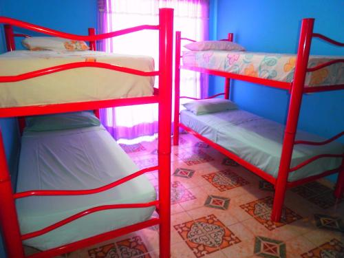 A bunk bed or bunk beds in a room at San Fernando Building