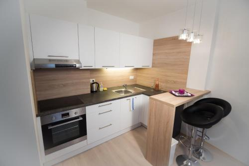 A kitchen or kitchenette at Bratislava Downtown Apartments