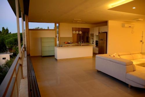 Orbanic appartments,Carmel center