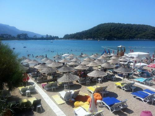 Golden Sand Beach Club & Caravan Holidays