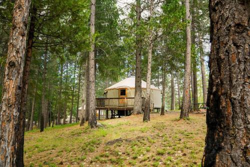 Yosemite Lakes Hillside Yurt 4