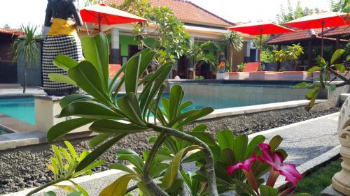 The Taran Villas Lembongan