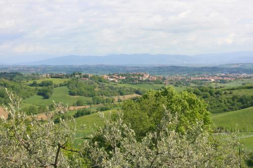 A bird's-eye view of Casa Bella