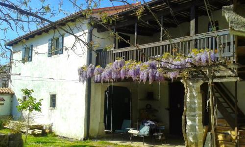 Veranda oz. zunanji predel v nastanitvi Apartmaji Hedera