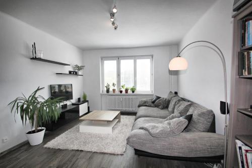 Atpūtas telpa vai bārs naktsmītnē Apartment Garden