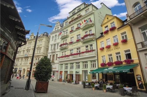Spa Hotel Purkyně