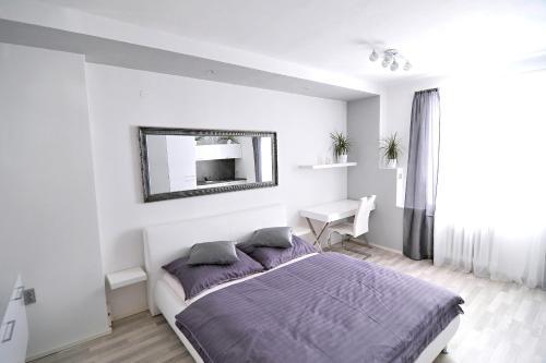 Apartment Liberec