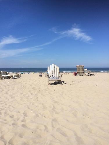 Sea & Dunes