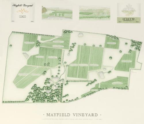Mayfield Vineyard