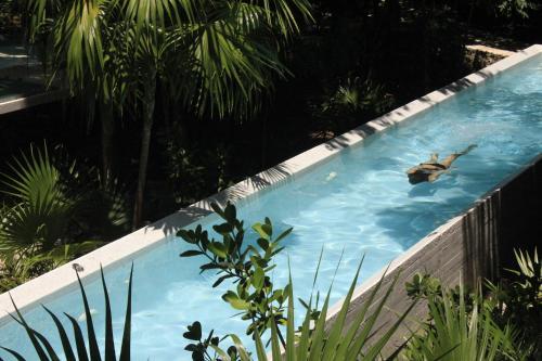 Deluxe Town Home, Akumal Riviera Maya, Golf Lovers, Nature Lovers