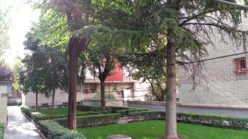 A garden outside Madrid Rent 3