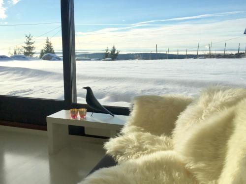 Mountain view Apartment Nordseter