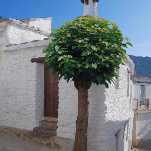 Casa El Rincón del Ángel