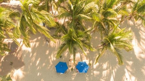 Hotel Pancho Playa