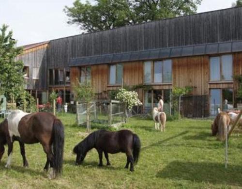Greussinghof