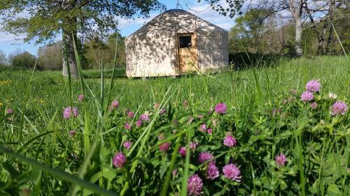 Frog Lake Yurts