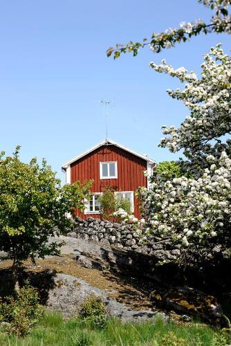 Stf Tjaro Hotell Vandrarhem Schweden Trensum Booking Com