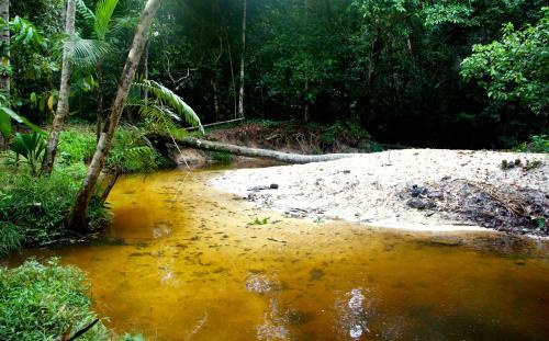 Reserva Natural Palmari