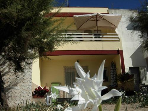 Appartamenti Su Spiaggia Fronte Mare Italia Torre Pali