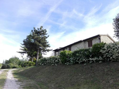 Colline di Castelbuono