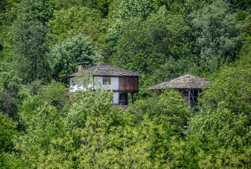 Authentic house in the remote Nature - Karashka B&B