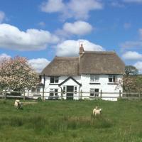 Devon thatched cottage