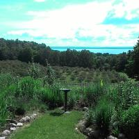Traverse City Getaway LLC