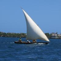 Wasini Island Bandas