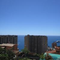 1Bedroom Apartment TOP OF MONACO with seaview