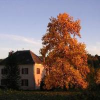 Chambres d'Hôtes La Lupronne
