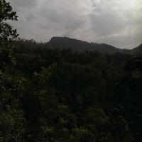 Montana view