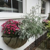 Ashbourne Holiday Homes
