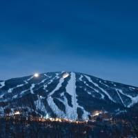 Vantage Point Condominium - Stratton Mountain Resort