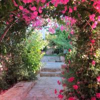 Aloe & Lotus Villas