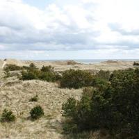 Two-Bedroom Holiday home in Skagen 8