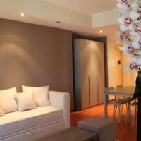 Vitruvio 43 Apartments