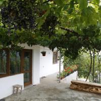 Villa Nanchevi