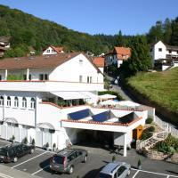 """Fewo und Apartments """"Zum Löwen"""" Heidelberg - Ziegelhausen"""