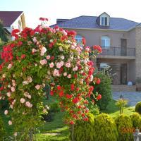 Arlin Residence